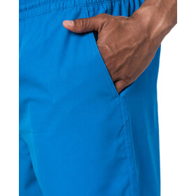Rip Curl Daily 16'' Volley Boardshorts Men blue